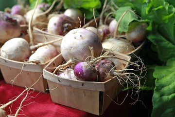 containers of turnips