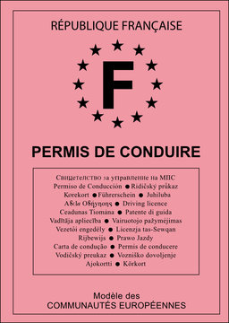 Permis de Conduire vectoriel - France