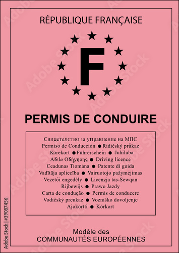 permis de conduire vectoriel france fichier vectoriel libre de droits sur la banque d 39 images. Black Bedroom Furniture Sets. Home Design Ideas