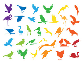 0603 Colorful Bird Silhouettes