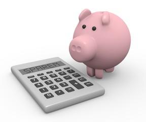 Taschenrechner Sparschwein