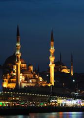 mosque on golden horn