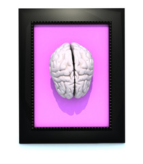 human brain in a framework
