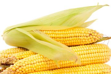cobs corn