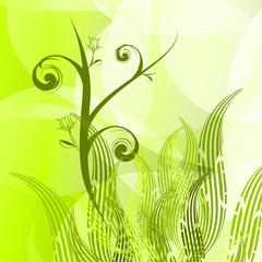 Bio background