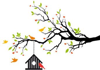 Staande foto Vogels in kooien bird house on spring tree, vector