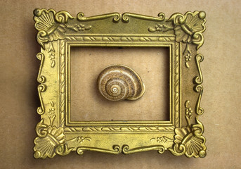 Snail in the frame