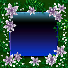 tropic night frame