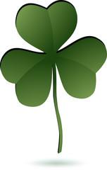 Shamrock leaf icon on white