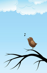 Bird singing song on tree branch