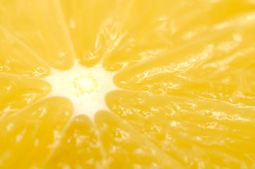 Aluminium Prints Slices of fruit Juicy Orange Macro