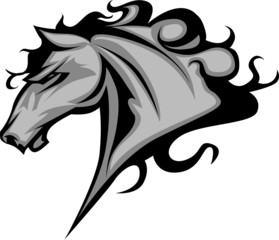 Wild Horse or Stallion Graphic Mascot Vector Image