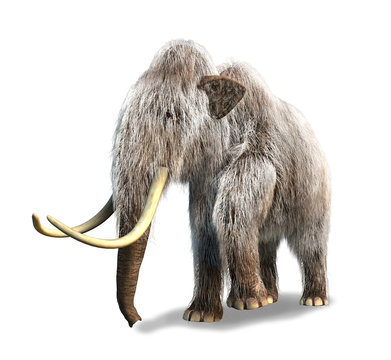 Photorealistic 3 D rendering of a Mammoth.
