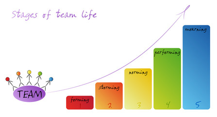 Stages of team life