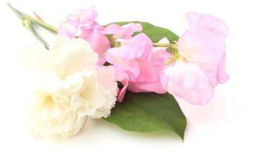 ピンクのスイトピーと白いカーネーション