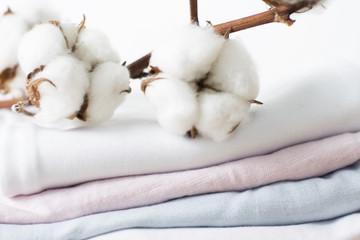 Cotton flower.