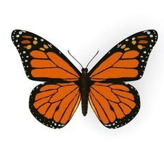 3d render of monarch butterfly