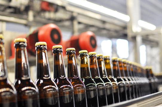 Fliessband Getränkeabfüllung / Conveyor Bottling Brewery