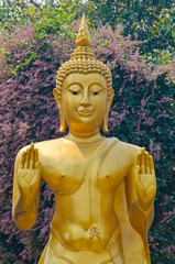 Golden Buddha image and flower background.