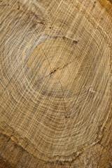 Hartholz geschnitten