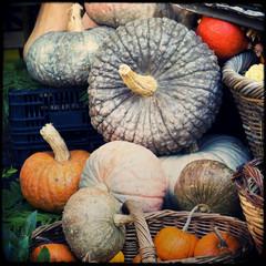 Zucche, arance, meloni, mercato ortofrutticolo