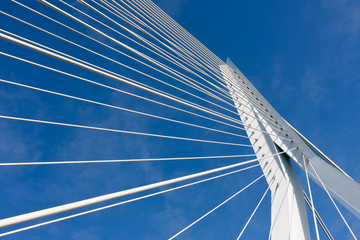 Detail of the cable stayed Erasmus bridge in Rotterdam,  the Net