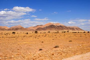 paysage du Damaraland 25