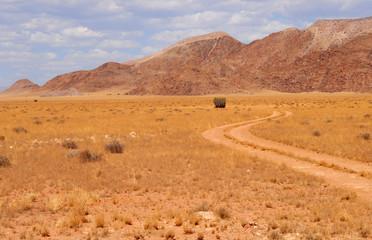 paysage du Damaraland 26