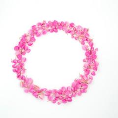 pink flowers circle frame