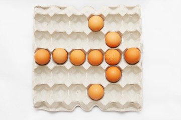 eggs in cardboard container,Arrow