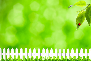 Summer backgrounds with bokeh, grass and white fence