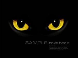 Cat eyes in dark night  Vector background