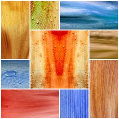 écorce de palmier