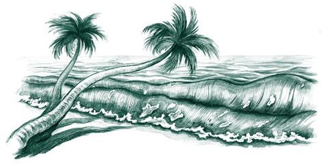 tropcal beach