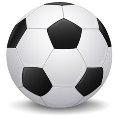 Soccer ball. Isolated