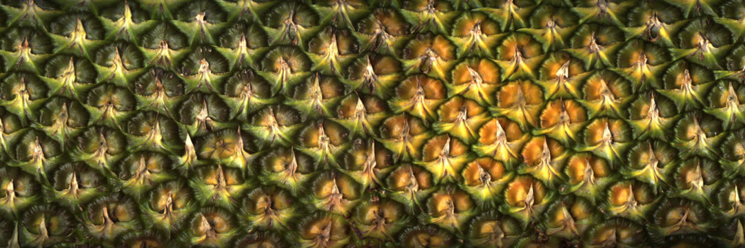 Surface of pineapple close up