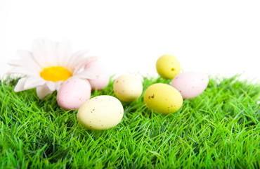 Easter card. Multi-colored eggs on a white background