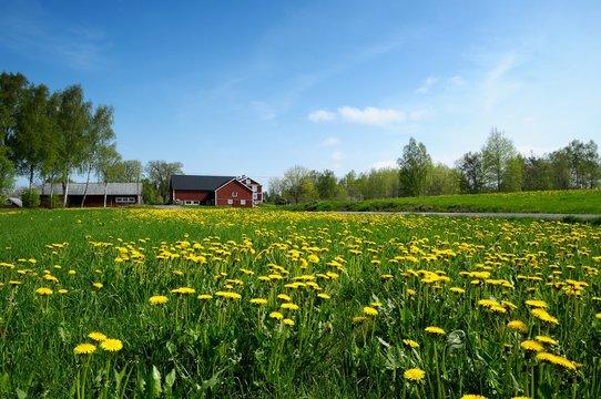 Vashult, Småland