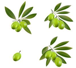 Green olive