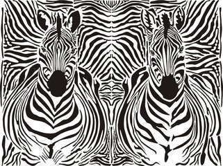 Zebra pattern background