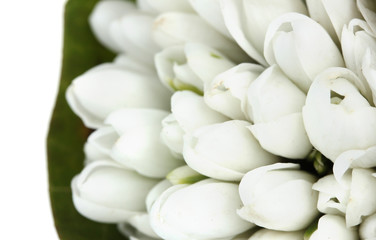 beautiful bouquet of snowdrops close up