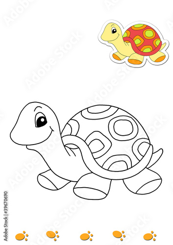 Animali da colorare tartaruga immagini e fotografie for Immagini da colorare aristogatti