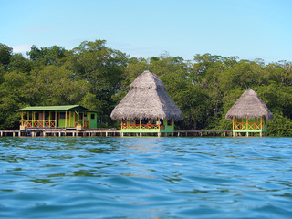 Tropical bungalows over water with lush vegetation, Caribbean coast of Panama, Bocas del Toro, Central America