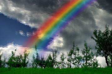 I colori dell'arcobaleno in 12 immagini (11)