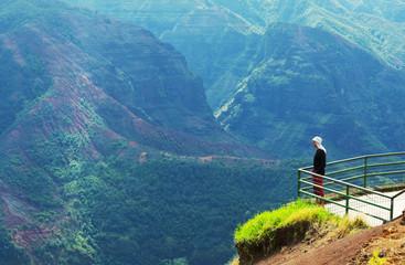 Spoed Foto op Canvas Groen blauw Canyon on Hawaii