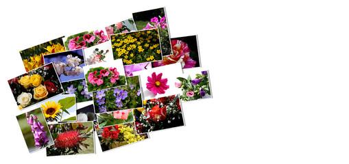 Karte als Blumencollage
