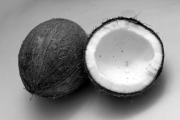 coconuts black and white