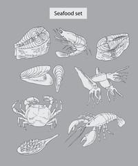 seafood set hand drawn illustrations