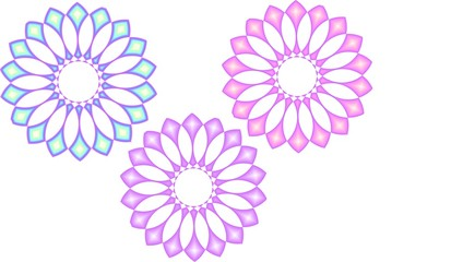 Three blossoms in pastel colors