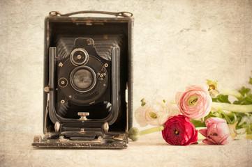 Macchina fotografica e ranuncoli - texture